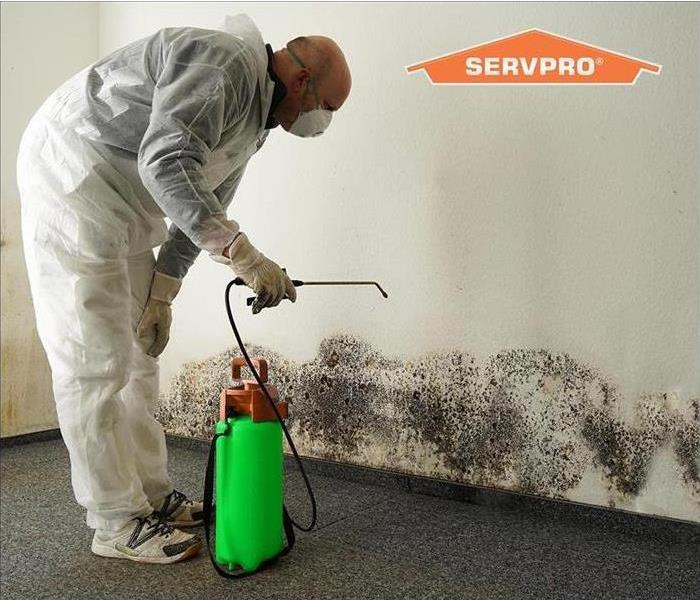 SERVPRO technician spraying to clean mold