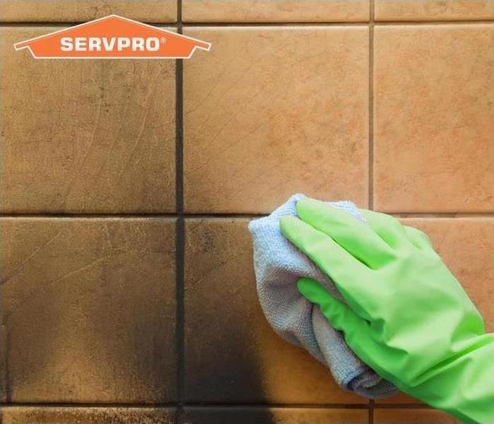 gloved hand cleaning tile wall
